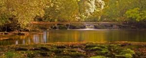 Derrywee River - Stress Mangement courses